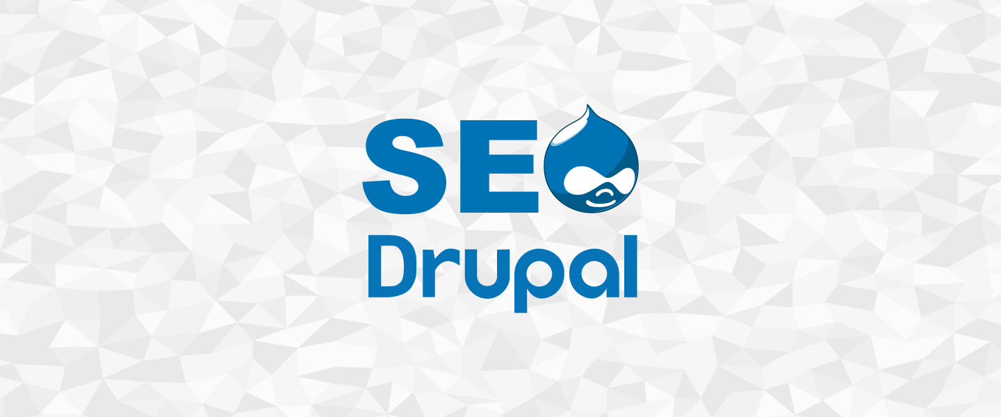 SEO for Drupal Series, Part 1: Project Discovery and The