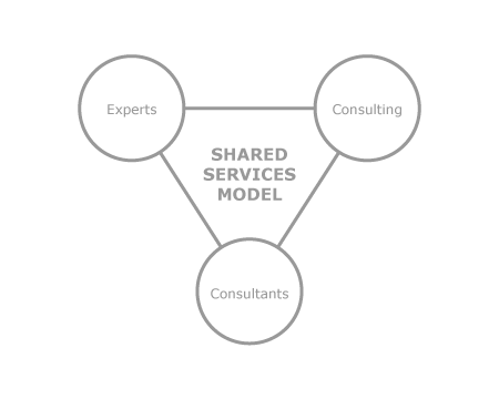 shared_services_model_diagram.png