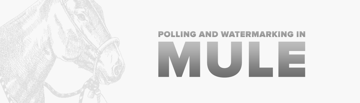 Polling and Watermarking in Mule   Appnovation